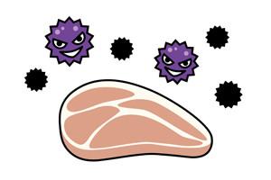お弁当に潜む菌の画像