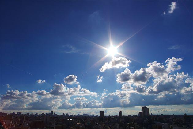 強い夏の日差し